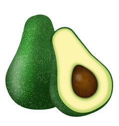 whole and cut in half avocado vector image