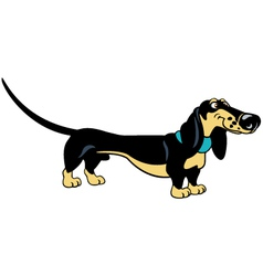 standing cartoon dachshund vector image vector image
