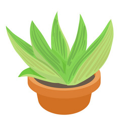 agave icon cartoon style vector image