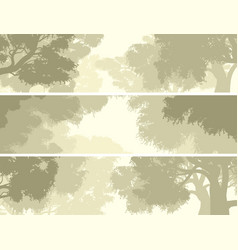 banners crown of trees against the sky vector image
