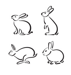 group of hand drawn rabbit on white background vector image