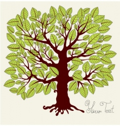 Spring tree with foliage vector
