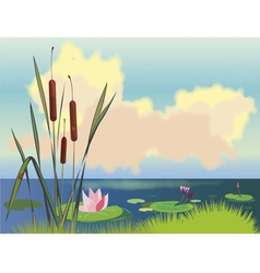 lake cane and lotuses vector image vector image