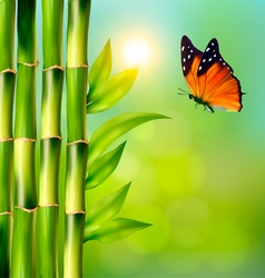 Spa background with bamboo and butterfly vector image
