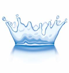 water crown vector image