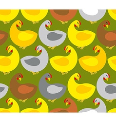 Chicken seamless pattern Chicken farm Many colored vector image vector image