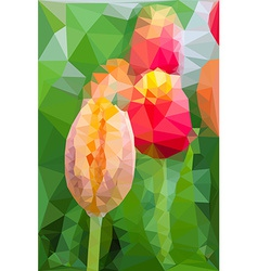 Triangular low poly style of tulip vector image vector image