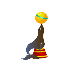 circus seal playing with yellow ball on red round vector image