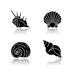 Exotic sea shells drop shadow black glyph icons vector