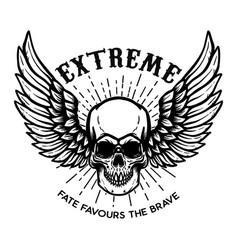 Extreme winged skull on white background design vector
