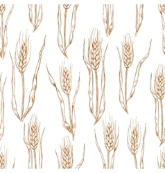 hand drawn wheat ears seamlless pattern vector image