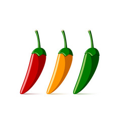 red yellow and green chilli peppers on white vector image