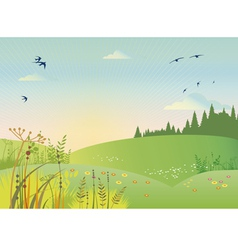 rural summer vector image