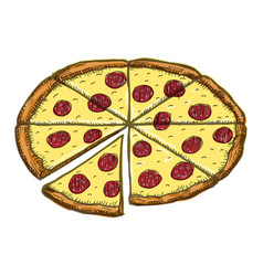 vintage pizza drawing hand drawn color vector image