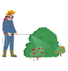 Worker spraying bushes plants roses flora vector