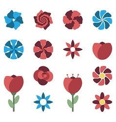 Set of different flowers vector image vector image