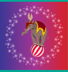Circus elephant balancing on ball vector