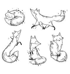 cute foxes sketch set vector image