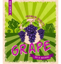 Grape retro poster vector image