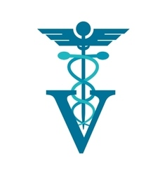 Isolated caduceus and vet design vector