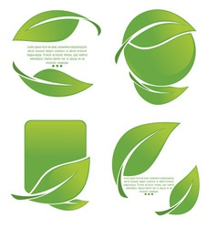 leaves symbols vector image