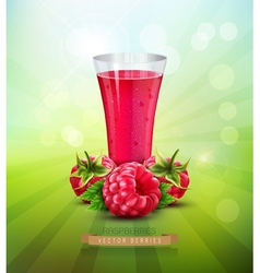 raspberry and a glass of raspberry juice vector image vector image