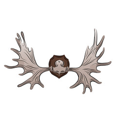 Color moose antlers trophy vector
