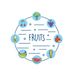 delicious fruits and vegetables nutriton diet vector image