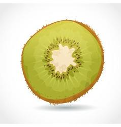 fresh ripe piece kiwi isolated on white vector image