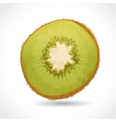 Fresh ripe piece of kiwi isolated on white vector image