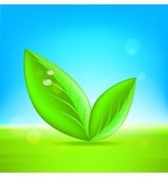 Green leaves 10 eps vector