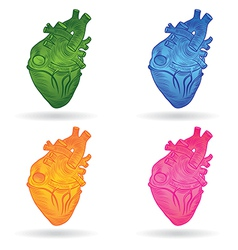 heart real set vector image