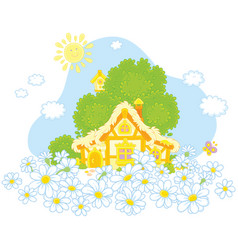 lodge and white daisies vector image