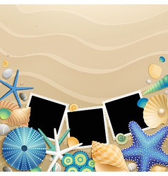 Photo frames and shells vector