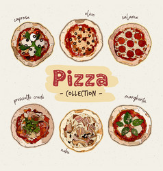 pizza top view set with different ingredients vector image