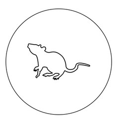 Rat icon black color in circle isolated vector