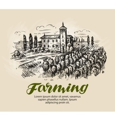 Vineyard sketch farm agriculture vector
