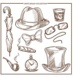 gentleman clothes and men club accessories vector image