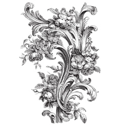 Acanthus and Peony vector image
