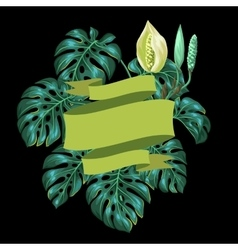 Background with monstera leaves Decorative image vector image