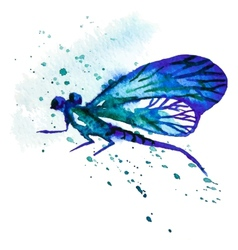 Blue Watercolor Dragonfly vector image