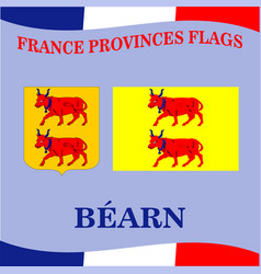 Flag of french province bearn vector