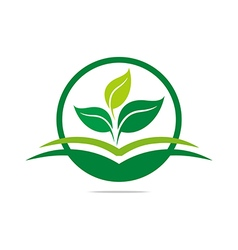 leaves mashed drugs organic product icon ve vector image