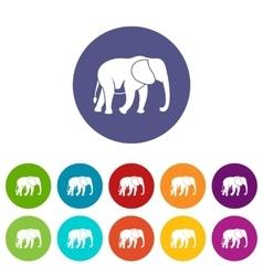 Wild elephant set icons vector