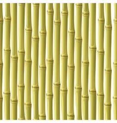 Abstract bamboo background vector