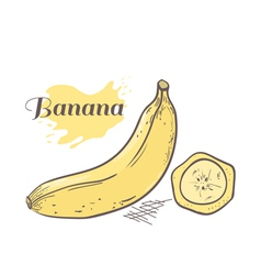 Banana with slice vector