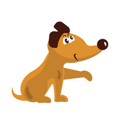 cute little dog vector image