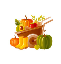 farm wheelbarrow with harvest fruit vegetable vector image