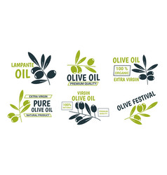 flat olive oil labels collection vector image