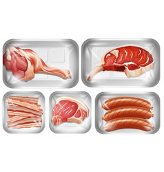 set meat warpping in tray vector image